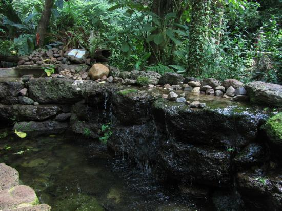 aquarium-montecarlo