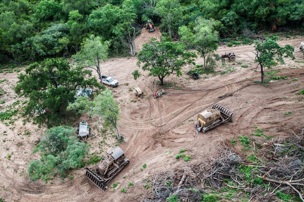 deforestacion gran chaco