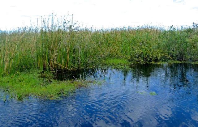 Estuidios desconexión del Iberá del río Paraná3